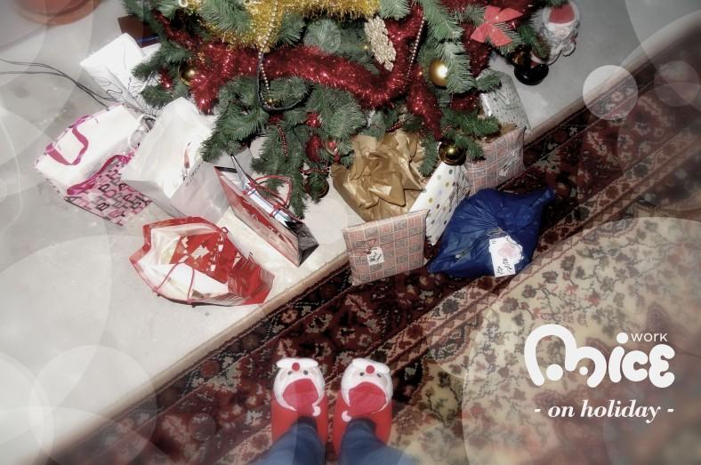 Mice Work & Christmas Holiday